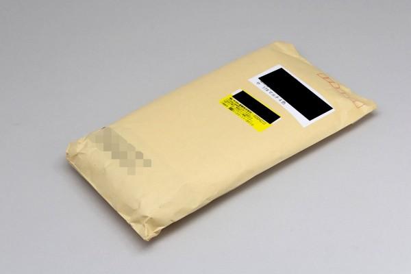 製品は茶封筒に入れられて、ヤマトのメール便で到着