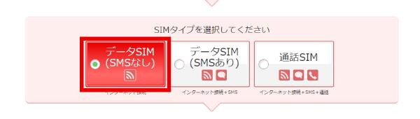 SIMタイプの選択では「データSIM(SMSなし)」を選びました