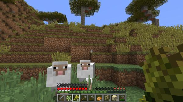 スポーン地点付近にいた羊たちを2匹、小麦を使っておびき寄せます