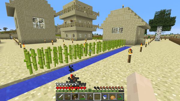 村のなかに水路を作り、サトウキビを植え付け