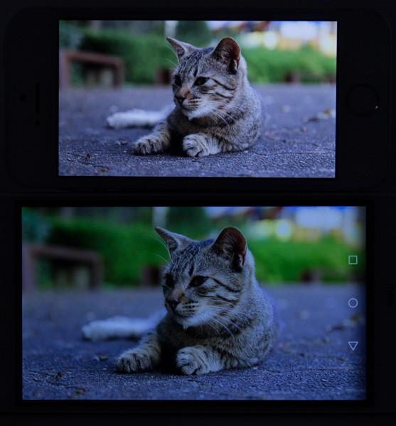 HUAWEI Y6(下)とiPhone SE(上)との発色の違い