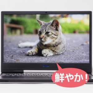 Dell G5 15 5590 映像品質