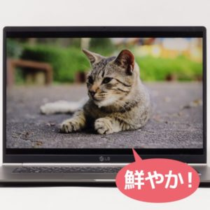 LG gram 17 (17Z990) 映像品質
