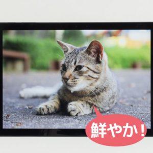 Surface Pro 6 映像品質