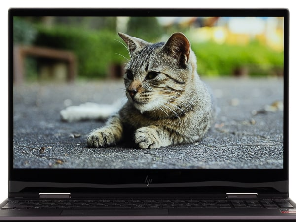 HP ENVY x360 15 (AMD) 映像品質