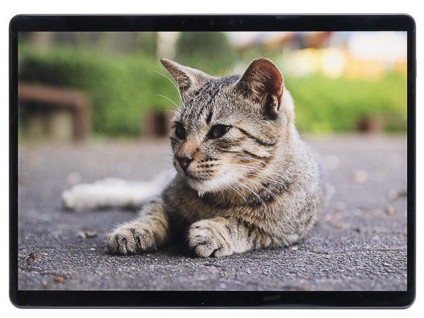 Surface Pro X 映像品質