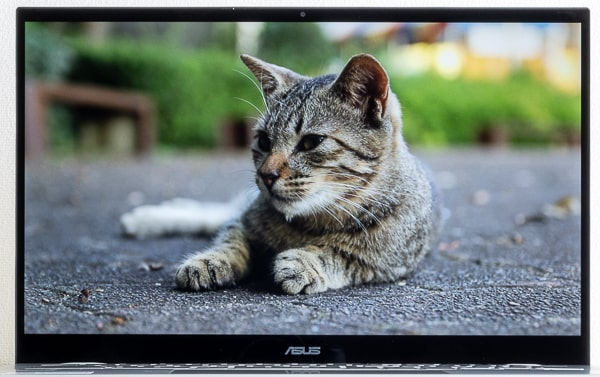 ASUS Chromebook Flip C436FA 映像品質